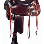 big-horn-gaited-saddle-1544