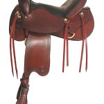 big-horn-ridgeline-trail-saddle-ii