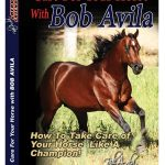 Professional's Choice Bob Avila DVD Care For Your Horse