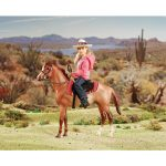 Breyer Western Horse and Rider 61070