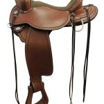 circley-trail-birdseye-saddle