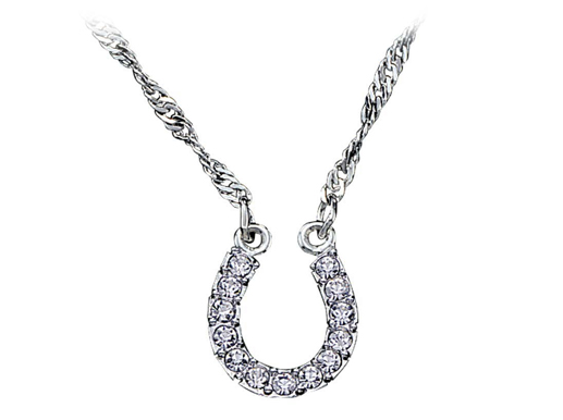 horseshoe-necklace