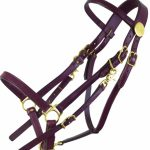 tucker-large-horse-bridle