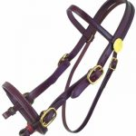 tucker-plantation-bridle