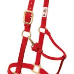 Weaver Original Adjustable Chin and Throat Snap Halter